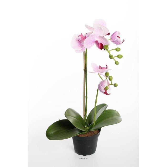 Orchidee artificielle 2 hampes en pot H 40 cm toucher reel Rose-crème