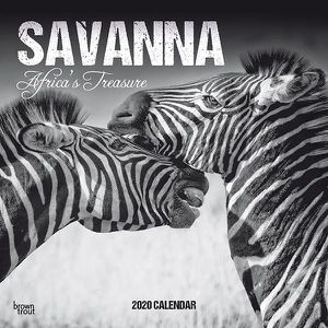 Calendrier 2020 Animaux.Calendrier 2020 Animaux