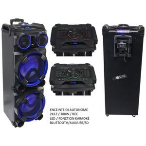 ENCEINTE ET RETOUR ENCEINTE DJ ACTIVE SONO MOBILE BOOMER 2X12