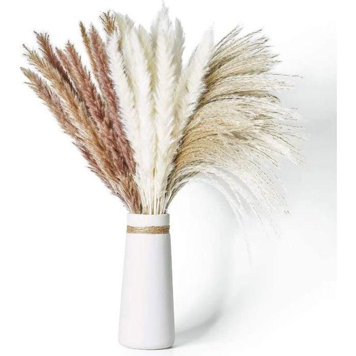 Herbe de la Pampa Séchée Naturelle 60Pcs avec 3 Types de Couleur pour Arrangements Floraux de Mariage Décoration d'Intérieur