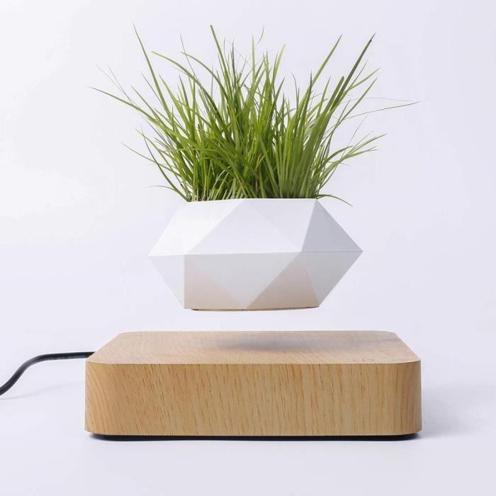 Lévitation Magnétique Pot de Plantes Flottantes Pot De Fleur de Bureau à Bonsaï de Lévitation D'air Maison Décor Plante Fleurs Pot