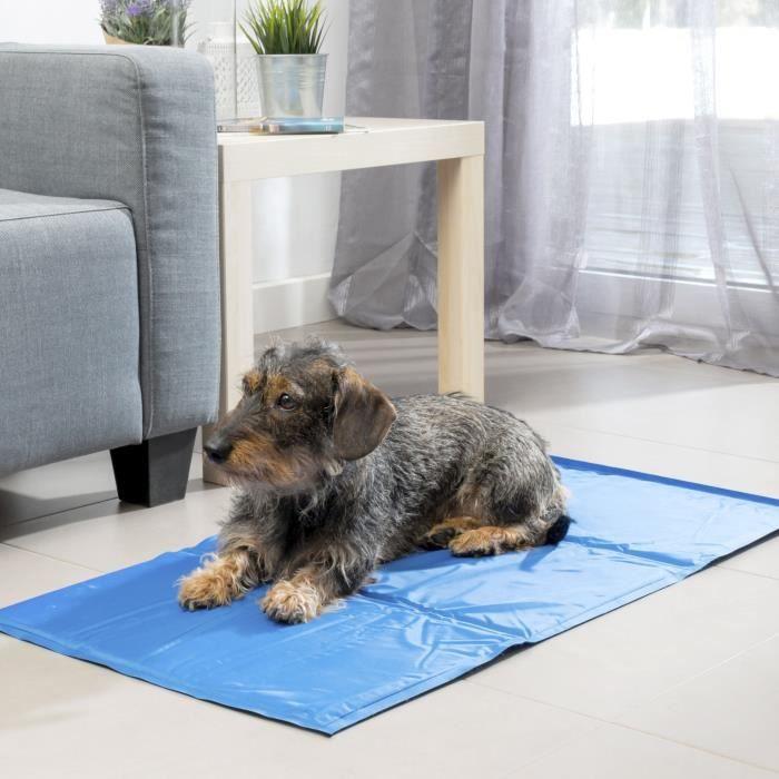 INNOVAGOODS Tapis de refroidissement - 90 x 50 cm - Pour chien