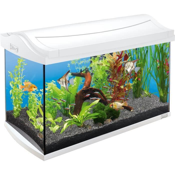 TETRA Aquarium AquaArt 60 L - Blanc - Pour poisson