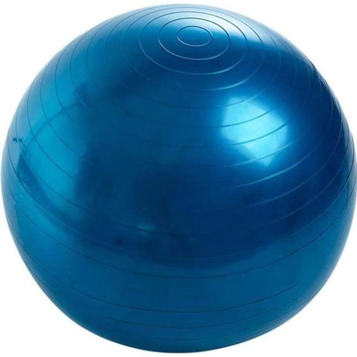 Balle de Fitness 55 cm, Ballon Grossesse, Swiss Ball pour Pilates Yoga Gym, Ballon d'exercice avec Pompe, Anti-éclatement et An 296