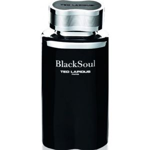 EAU DE TOILETTE Black Soul de Ted Lapidus EDT Spray 100ml