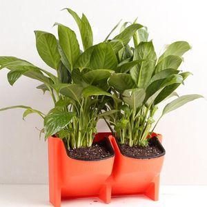 mur vegetal interieur achat vente pas cher