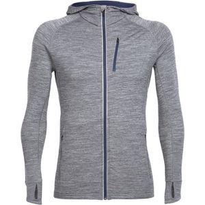 Icebreaker Sweat shirt Quantum Homme gritstone hthr Gris