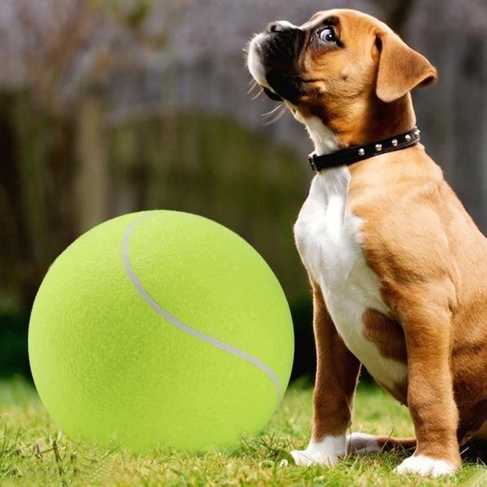 Balle de Tennis Tennis Jouet d'animal Produit de sport Jouet d'exercice Da06190