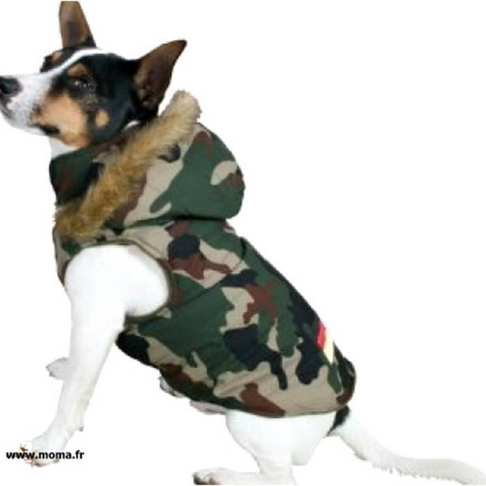 manteau militaire pour chien