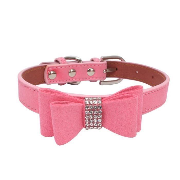 collier pour chien reglable