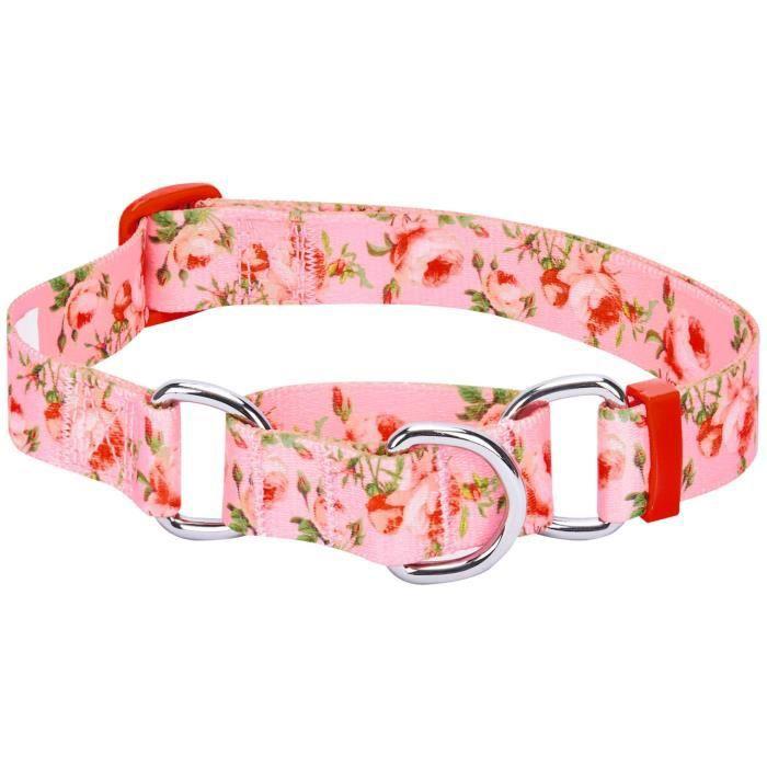 Blueberry Pet Collier Chien Martingale entraînement en sécurité Inspiration du printemps, Rose, Moyen, ajustables très résistant