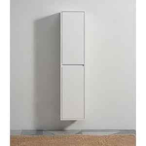 COLONNE - ARMOIRE SDB Colonne de salle de bain 2 Portes - Blanc - 160x35