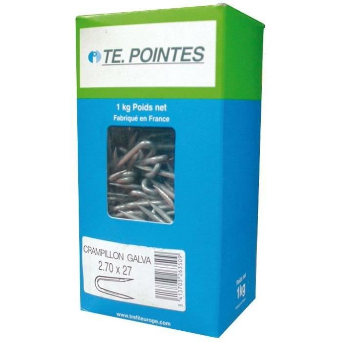 TE. POINTES Crampillons galvanisés - 27x2,7 mm - Boîte de 1 kg
