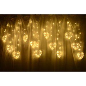 BLOOMEIN Rideau de Lumière Coeur LED Guirlande Lumineuses ...