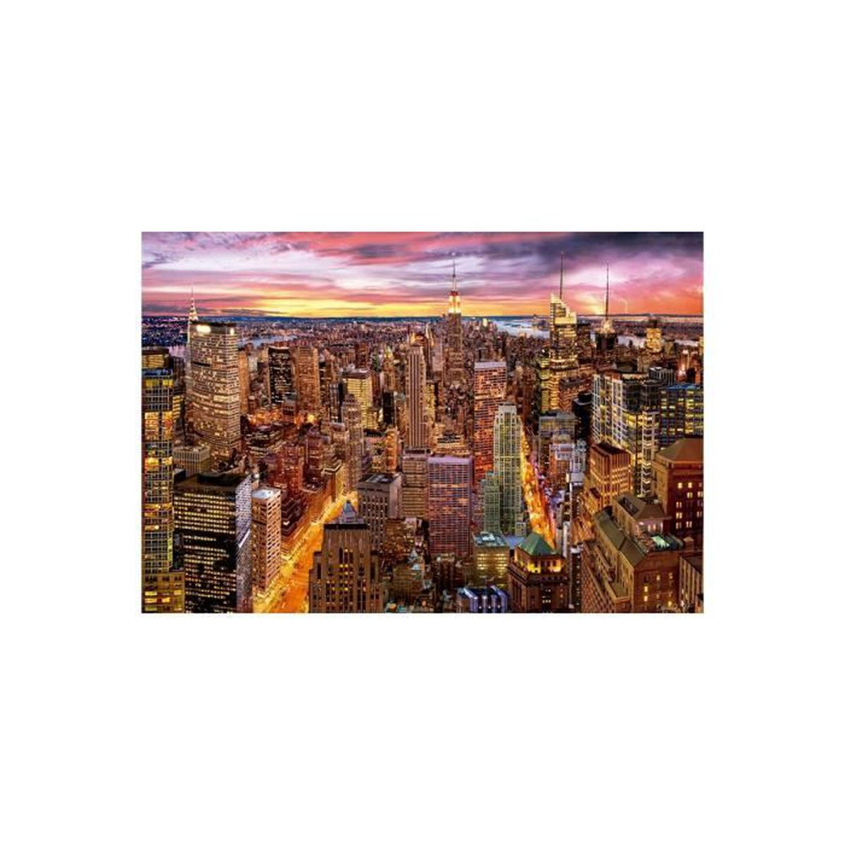 PUZZLE Puzzle Adulte : La Vue De Manhattan - 3000 Pieces