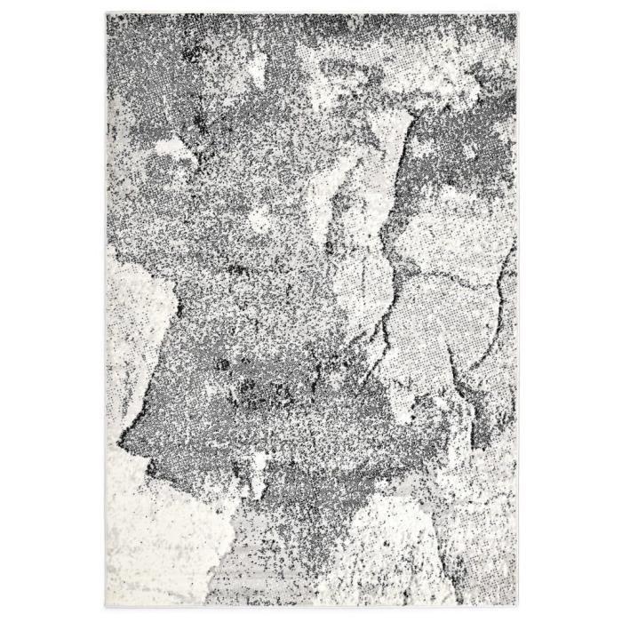 Tapis Tapis de sol Tapis de salon Gris - 160x230 cm PP
