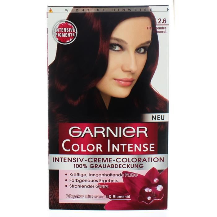 Crème Coloration Cheveux Permanente Garnier Color Intense 26