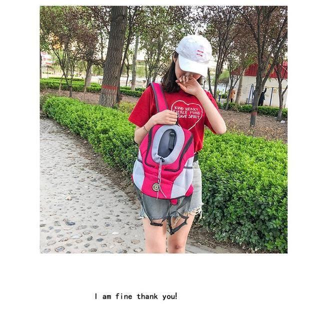 Hoomall sac de transport pour chiens Sac Portable avec sac à dos en maille, Double épaule, sac de transport pour chiens SN0499