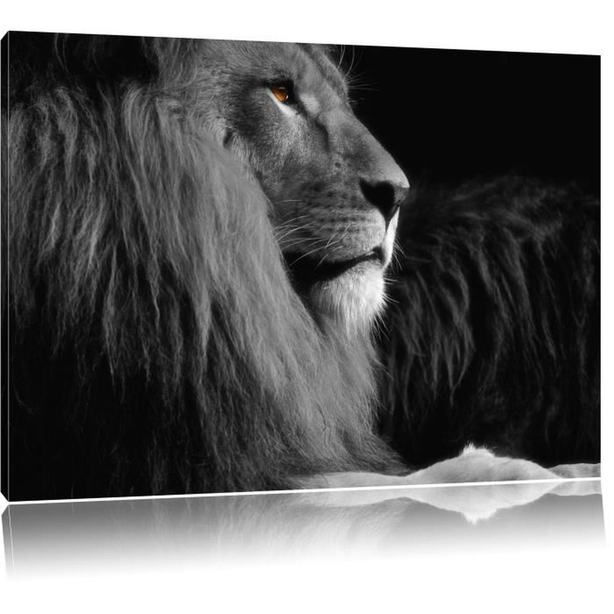 toile imprim beau lion noir blanc fier compl tement encadr es avec civi re wall art print. Black Bedroom Furniture Sets. Home Design Ideas