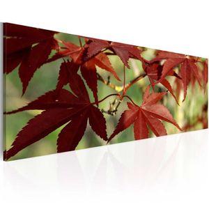 TABLEAU - TOILE Tableau  |  Couleurs d'automne | 120x40 |  Paysage