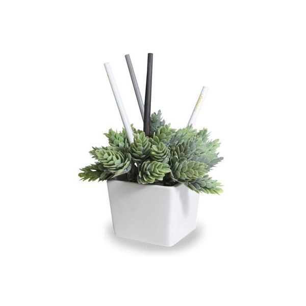 pot a crayons plante verte type vert glace j02 achat vente pot crayon pot a crayons. Black Bedroom Furniture Sets. Home Design Ideas