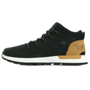 basquettes homme basse timberland