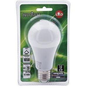 AMPOULE - LED Ampoules LED E27 standard - 12 W équivalence 75 W