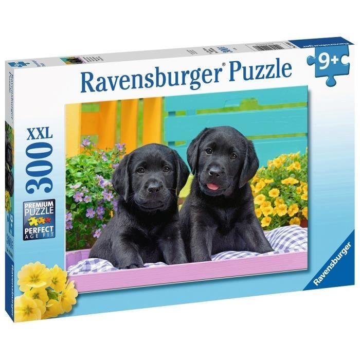 Puzzle 300 p XXL - Labradors noirs