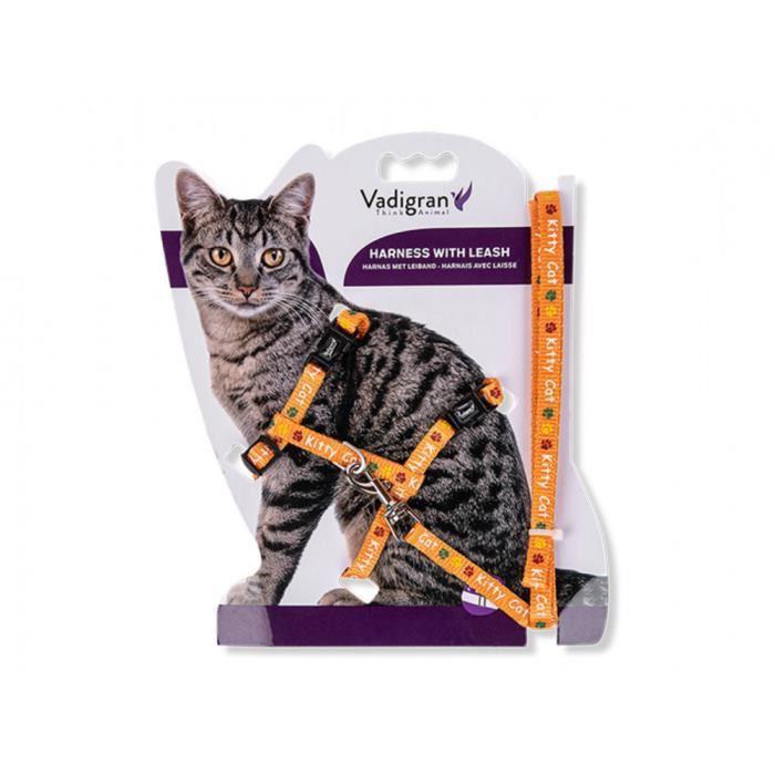 Harnais avec laisse 1.20m. KITTY CAT orange. pour chaton.-Vadigran 3,000000 Orange