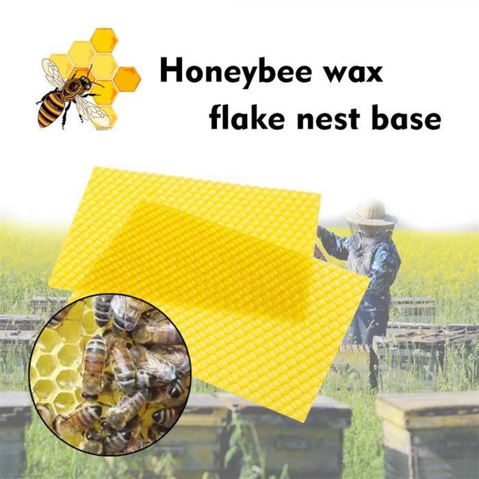 Cadre Durable Ruche dabeille en Acier Inoxydable Support Pratique Cadre Ruche Bee Lifter Apiculture /Équipement Outil
