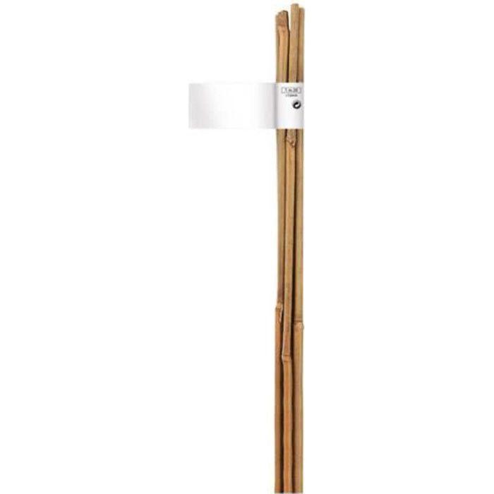 Tuteur Bambou Hauteur : 90cm