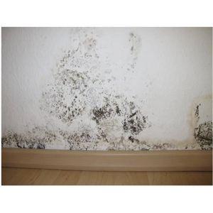 TRAITEMENT SOLS BOIS Barrière anti-humidité 750 ml Blanc mat
