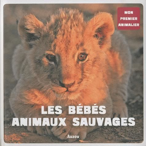 Les b b s animaux sauvages achat vente livre patrick - Bebe animaux sauvage ...
