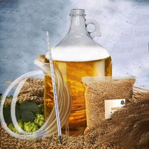 BIÈRE Coffret Fabrication Bière Blonde Maison - Cadeau M