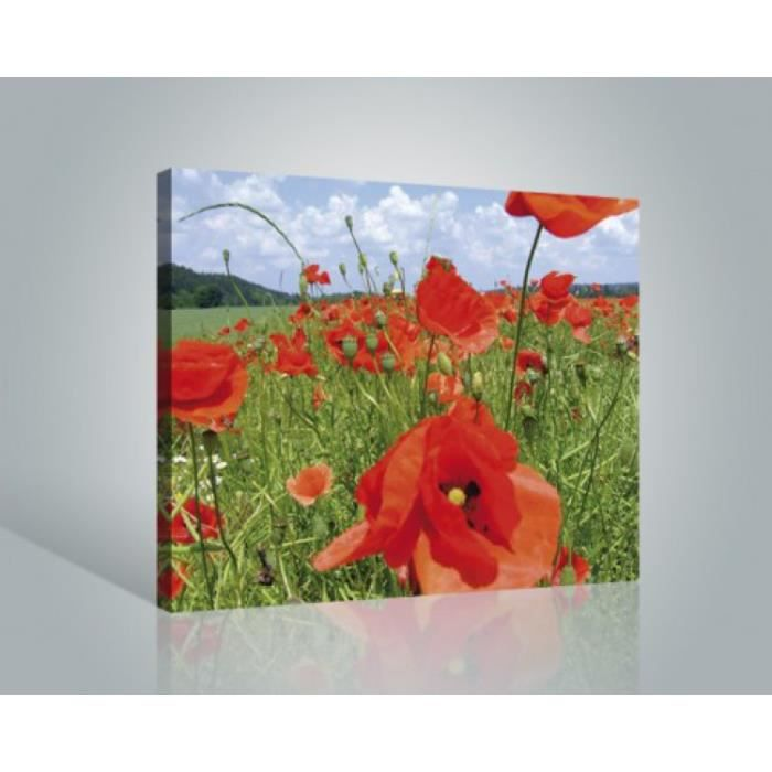 fleurs poster reproduction sur toile tendue sur ch ssis champ de coquelicots 40 x 50 cm. Black Bedroom Furniture Sets. Home Design Ideas