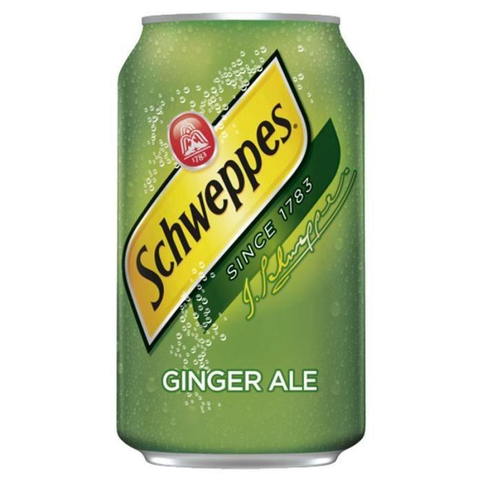 Schweppes - Schweppes Ginger Ale 33cl (pack de 24)