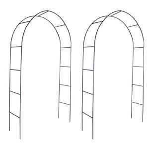 ARCHE Arche de jardin 2 pcs pour plantes grimpantes