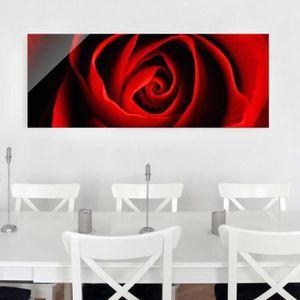 CADRE PHOTO 40x100 cm photo en verre - belle rose - croix pano