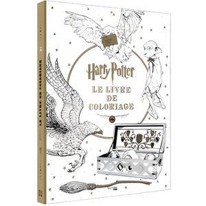 LIVRE DÉVELOPPEMENT Harry Potter
