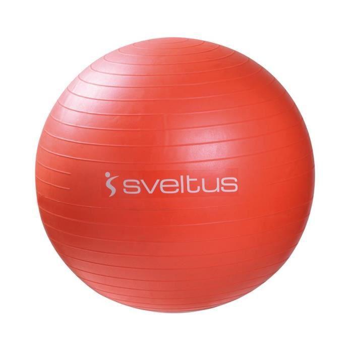 Gymball Ballon de gymnastique Ø 55cm