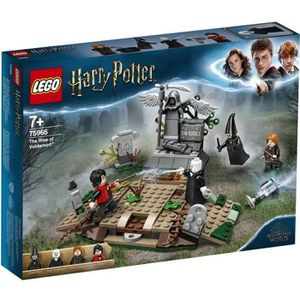 ASSEMBLAGE CONSTRUCTION LEGO® Harry Potter™ 75965 La Résurrection de Volde