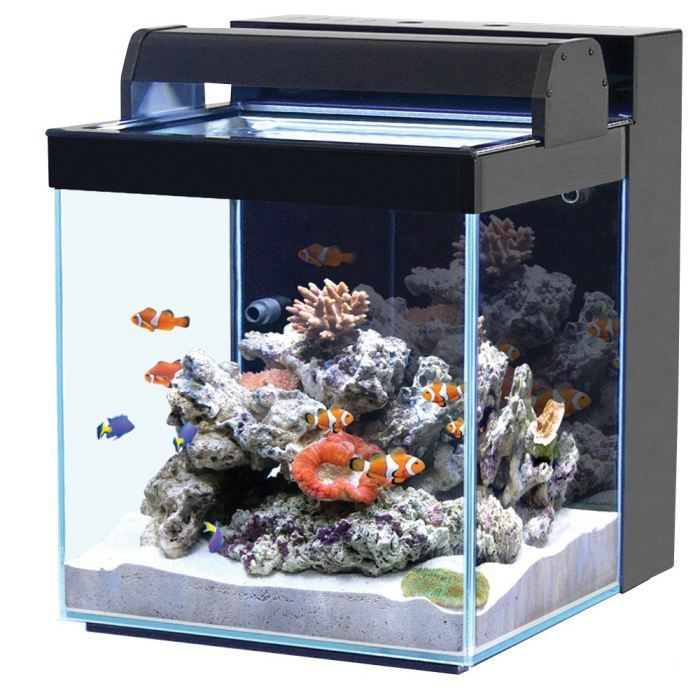 acheter aquarium 40l. Black Bedroom Furniture Sets. Home Design Ideas