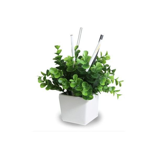pot a crayons plante verte type vert j06 achat vente pot crayon pot a crayons plante. Black Bedroom Furniture Sets. Home Design Ideas