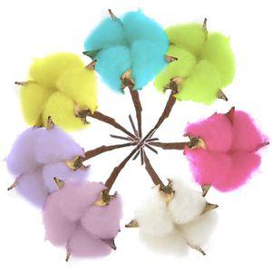 FLEUR ARTIFICIELLE Coloré Naturel Fleur De Coton 7pcs Séchée De Coton