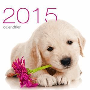 Calendrier mural chiens 2015 achat vente livre for Calendrier mural 2015
