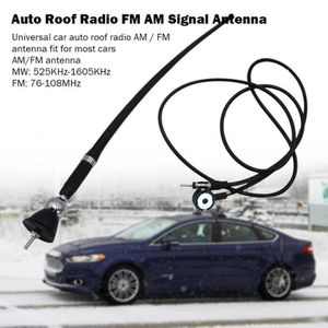 Voitures Garde-boue//Toit Tête Caoutchouc Montage Antenne Flexible radio AM FM