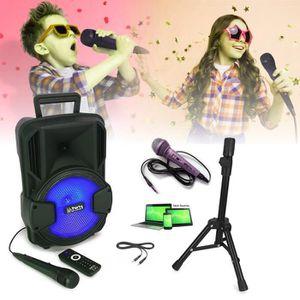PACK SONO Karaoké ENCEINTE SONO + USB MP3 BLUETOOTH FM + 2 M