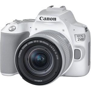APPAREIL PHOTO RÉFLEX CANON 250D Appareil photo Reflex + Objectif 18-55