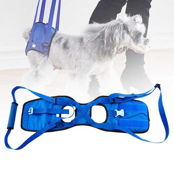 Fournitures pour animaux domestiques Support pour chien handicapé, aide à la marche, harnais, ceinture - Type S