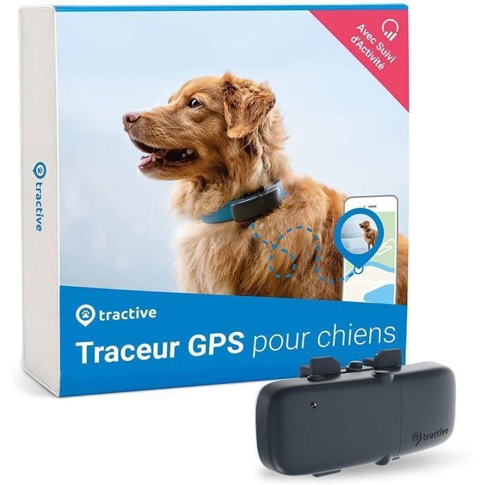 collier GPS pour chien, Traceur avec portée illimitée, Suivi d'activité, Étanche, Léger (Modèle 2019)